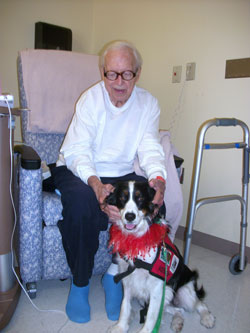 elderly patient with visiting hospital dog